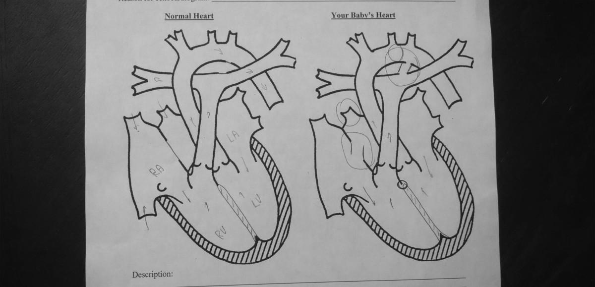 Samuel's Heart